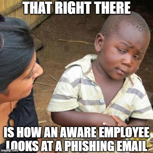 Cyber security memes